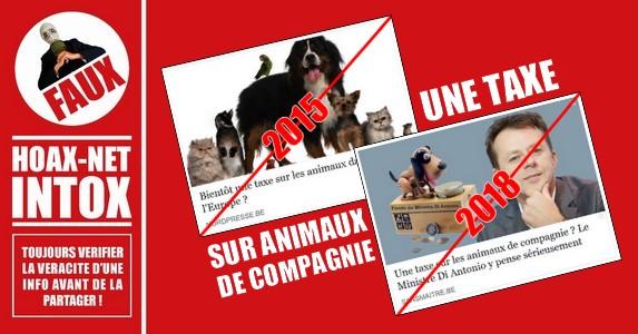Non, il n'y aura pas une taxe Belge et Européenne sur les animaux de compagnie pour les particuliers