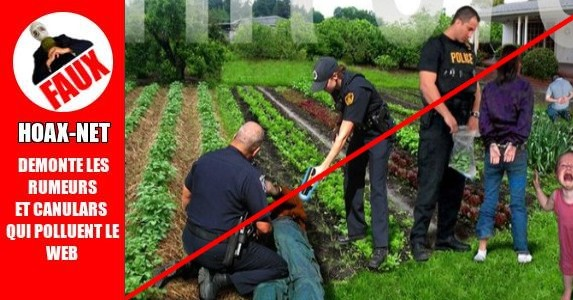 Europe : vers une interdiction des potagers privés.