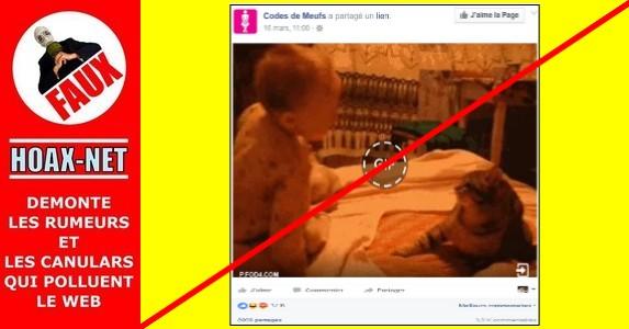 GIF – bébé agressé par un chat ou l'histoire d'une manipulation d'opinion !