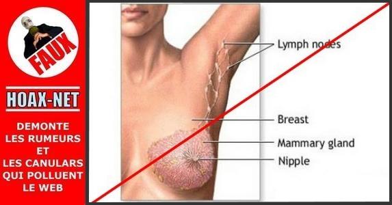 NON, les anti-transpirants ne provoquent pas le cancer du sein !
