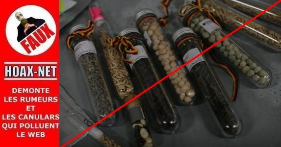 NON, l'Europe ne criminalise pas les semences anciennes