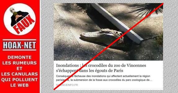 Inondations : NON, Il n'y a pas de crocodiles du zoo de Vincennes qui se sont échappés dans les égouts de Paris.