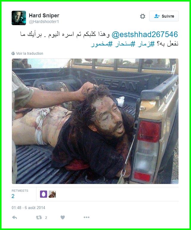 terroriste violeur 7