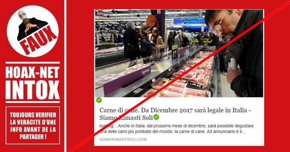 Non, L'Italie ne prévoit pas la viande de chien au menu