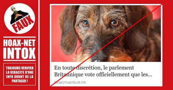 Non, une loi en Grande-Bretagne sur la non sensibilité des animaux n'a pas été votée.