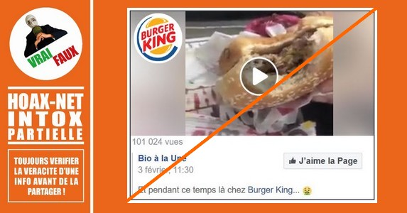 Des vers chez Burger King : Mise au point