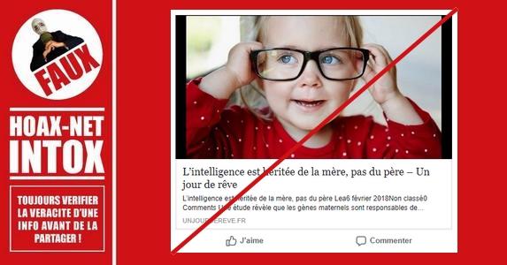Non, l'intelligence n'est pas héritée QUE de la mère.