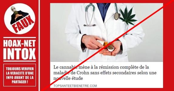 NON, le cannabis ne mène pas à la rémission complète de la maladie de Crohn !