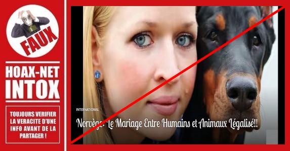 Non, la Norvège n'a pas légalisé le mariage entre un humain et un animal.