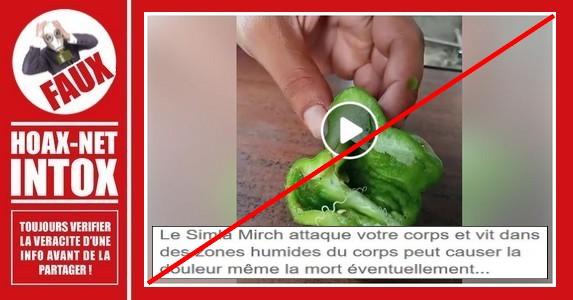 Non, le ver dans ce poivron n'est pas mortel et le ver Shimla Mirch n'existe pas