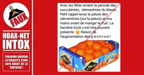 Non, les clémentines du Maroc ne sont pas la cause de l'augmentation des gastros !