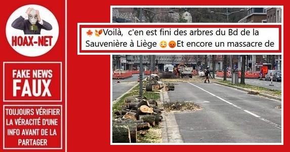 Liège (Belgique) : Non, la coupe de ces arbres ne laissera pas place au béton.